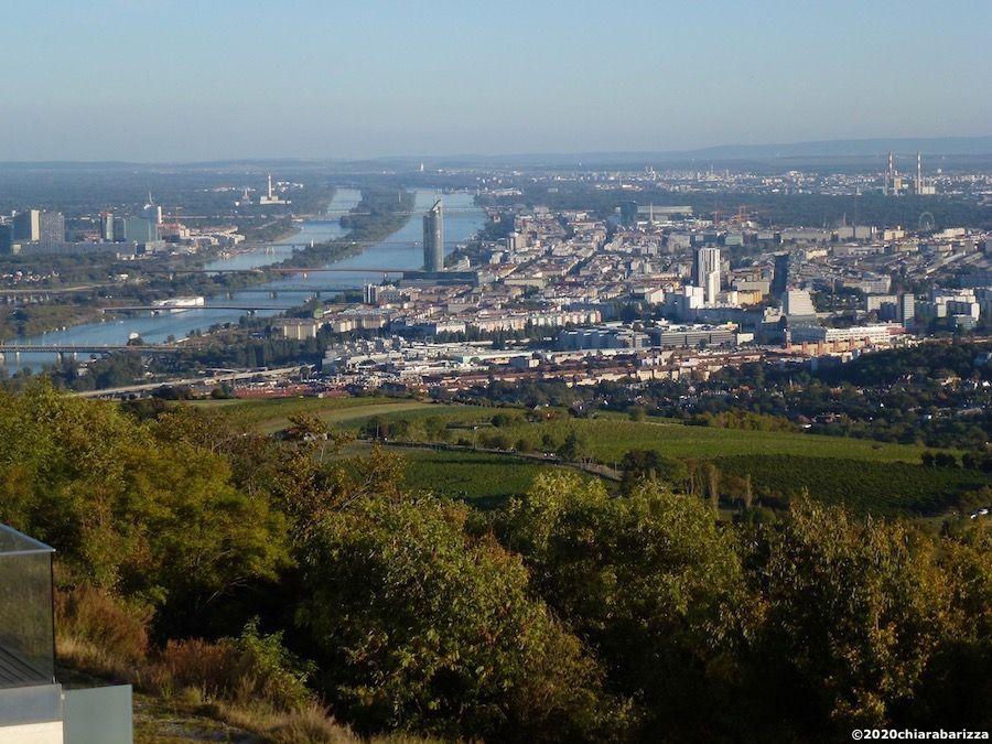 vista del danubio dalle colline dei vigneti del nussberg